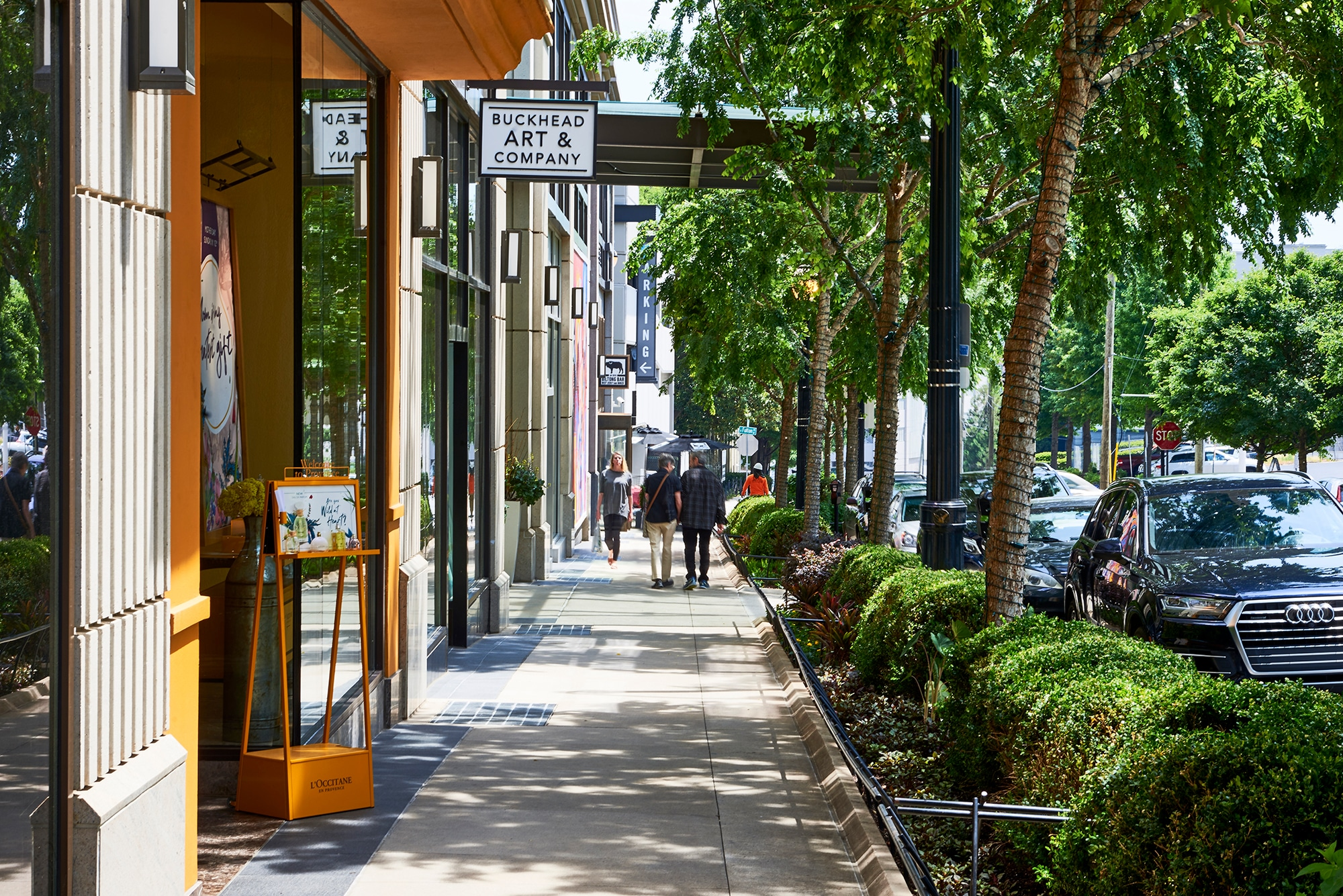 If You Like Luxurious Living, You'll Love Apartments on Peachtree